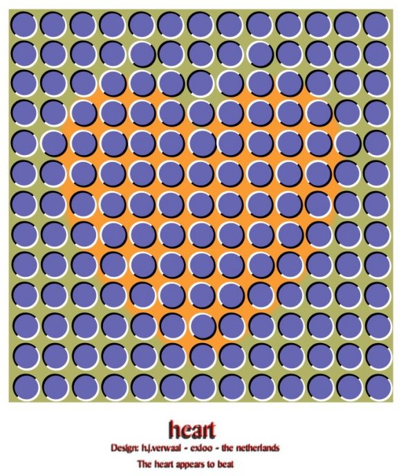 Beating Heart Optical Illusion